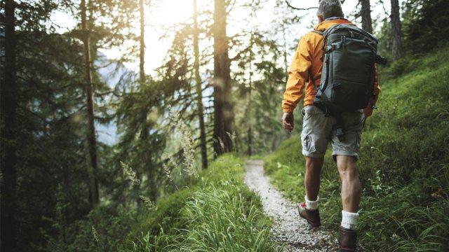 man hiking wooded trail